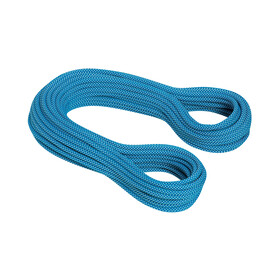 Mammut 9.5 Infinity Classic Rope 80m royal-white